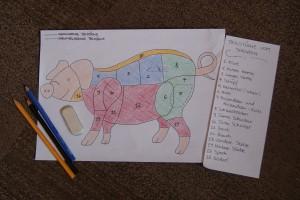 Das Schwein und seine Teilstücke