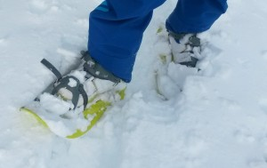 Ein Paar Schneeschuhe