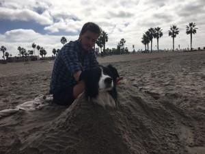 Hundestrand in San Diego